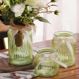 European-Style Transparent Glass Vase for Home Decoration and Hydroponics