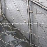 Stainless Steel Metal Rope Mesh for Decoration/Cable Netting