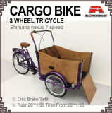 Cargo Bike Carton Bicycle Three Wheel Tricycle Rickshaw Belt Drive