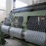 Hot Dipped Galvanized Hexagonal Wire Netting for Fencing with Competitive Price
