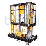 Double Masts Aerial Work Platform for Max Height of Platform (9m)