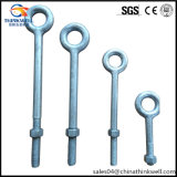 Galvanized Forged Steel Eye Anchor Bolt with Threaded End