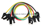 OEM 11PCS Resistance Bands Power Crossfit Equipment with D Ring