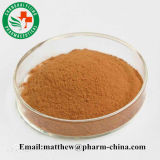 Sell High Purity Siberian Ginseng Acanthopanax Eleutheroside Extract
