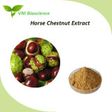 ISO SGS Certified 100% Natural Horse Chesnut Extract with Aescin 20%-98%
