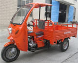 250cc Closed Three Wheel Motorcycle Tricycle with Cabin
