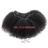 Afro Curly 7 Pieces/Set Brazilian Virgin Hair 120g/Set Clip in Hair Extensions