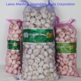2020 New Crop Fresh Normal White Red Chinese Garlic