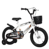 Steel Frame Bicycle Toys for Kids/Cool Style Bike for Baby to Ride on (90316)