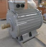 300rpm 500kw Ocean Power Permanent Magnet Generator