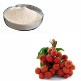 Fruit Juice Powder Litchi Powder/Lychee Powder/Fruit Lichi Freeze Dried Powder