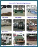 Plywood Manufacturing Plant Machine Competitive Price/Plywood Production Line