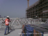 Project in Qatar Stainless Steel Space Frame Canopy