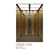 Residential Passenger Elevator Stainless Steel Center Open Door