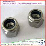 DIN982 Zp Prevailing Rorque Type Hexagon Nuts, Heavy Type, with Nylon
