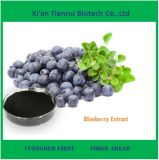 Wild Blueberry Extract Blueberry Anthocyanin