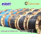 Yjv Electric Cable XLPE Insulation PVC Sheath 3*10mm2+1*6mm2