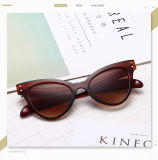 Best Quality Colored Plastic Vision Womens Sunglasses Trendy