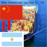 Sea Freight From Shenzhen or Guangzhou to Buenos Aires Argentina