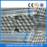 ERW Hot Rolled Pre- Galvanized Pipe