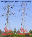 Co-Location Cell Sites on Paired Power Transmission Towers (MGPT-CT008)