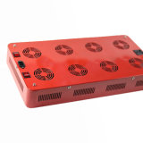 Hot Selling LED Grow Light for Lettuce Made in China