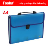Foska A4 13 Layers Transparent Color Expanding File