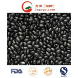 Export Good Quality Fresh Chinese Black Kidney Bean