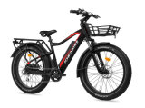 Eelctric Fat E Bike for Sale in Europe