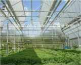 Agriculture Commercial Greenhouse with PC Hollow Sheet