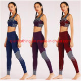 2019 China Cheap Gym Pant Running Wear Breathable Yoga Clothes Vest Sport Bra and Pants Fitness Set with Best Quality