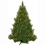 Pre-Lit Carolina Fir Artificial Christmas Tree with Clear Lights (MY100.091.01)