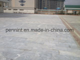 Europe/Africa/Middle East High Polymer Cement Waterproof Coating