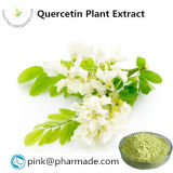 Pure Natural Quercetin Plant Extract  Sale