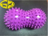 Pet Dog PVC Ball Toys for Dog Chew, Cleaning of Teeth, Dog Education