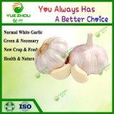 Wholesale Organic Fresh Garlic Price From Shandong Supplier