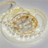 SMD3528 LED Strip Light 12VDC With Reasonable Price Good Quality