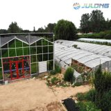 Cheap Multi Span Glass Greenhouse Clips Steel Structure