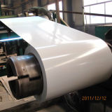 PPGI Steel Coil Sheet India Traders′ Preferred Supplier