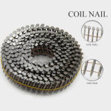 New Design Galvanized Twisted Nails with Nice Price