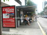 Bus Shelter for Outdoor with Light Box (HS-BS-A024)
