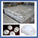 EPS Aluminium Mould for Vegetable Fruit Helmet Boxes