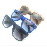 New Fashionable Designer PC Frame Sunglasses with Metal Decoraction