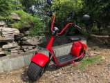 Electric EEC Brushless Fat Tyre Scooter