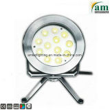 36W Staineless Steel LED Underwater Lighting for Fountain