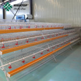 Good Price Layer Chicken Farm Laying Hens Poultry Battery Cages for Sale