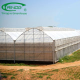 Modern multi-span high tunnel plastic film/ glass/ polycarbonate hydroponnics greenhouse for agriculture