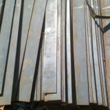 Steel Flat Bars S235jr Ss400 A36 Standard Material in China for Sale