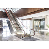 China Supplier 0.5m/S Speed Outdoor Escalator and Moving Walks
