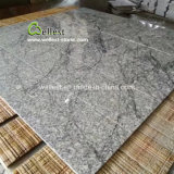 Crazy Veins Fantasy Grey Granite Tile Outdoor Paving and Flooring for Pool